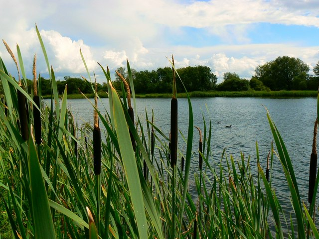 cotswold water park lake 32